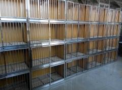 赛鸽配对巢箱,配对笼规格80.40-45公分可以拆装